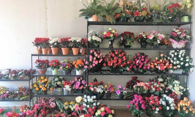 Les Tergal chez votre fleuriste à Avignon